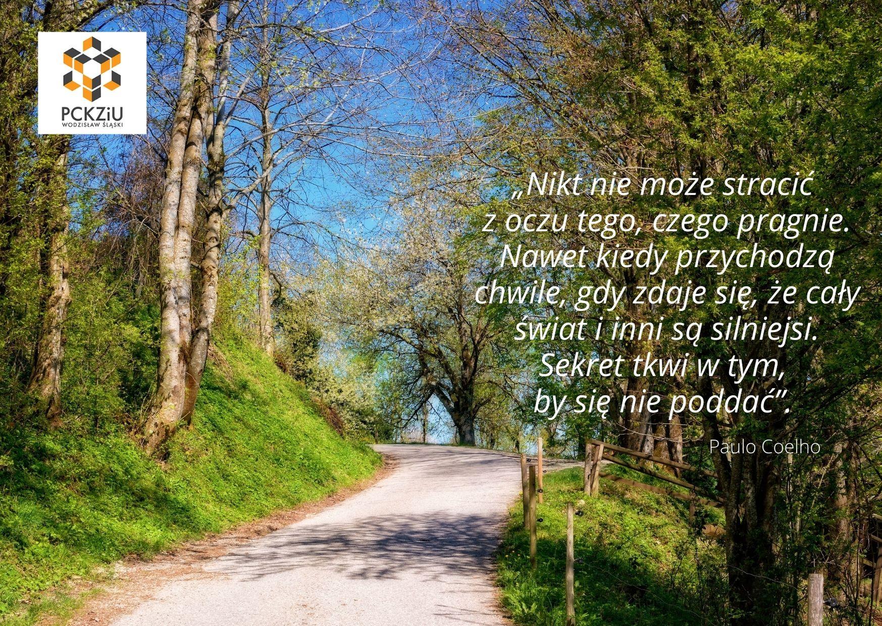 Ilustracja graficzna do wiersza Paulo Coelho występującego w życzeniach Pani Dyrektor dla maturzystów: jasna słoneczna droga wśród brzóz